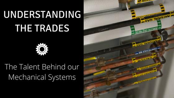 Understanding the Trades